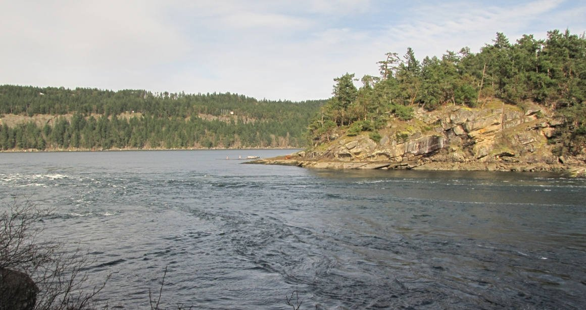 Currents at Dodd Narrows