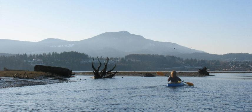 Nanaimo River Estuary with Mount Benson in background