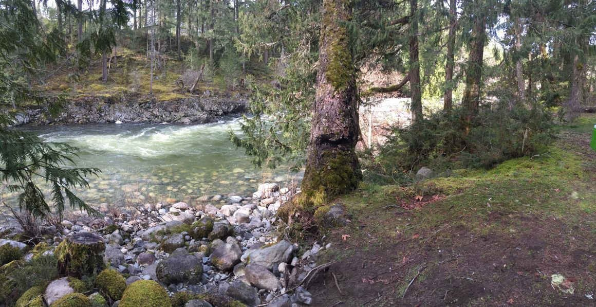 Whitewater in March at Nanaimo River