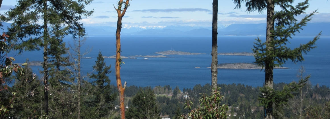 View from The Foothills, Nanaimo