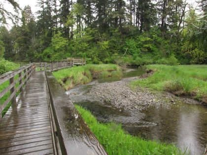 Boardwalk at Chase River Estuary Park