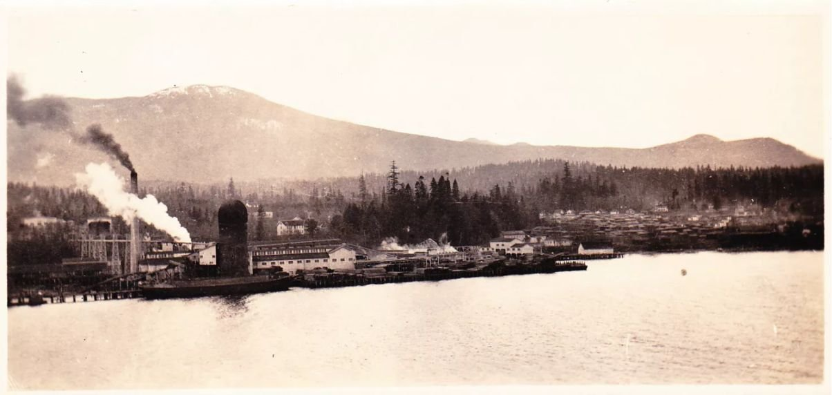Chemainus mill and homes 1920s perhaps