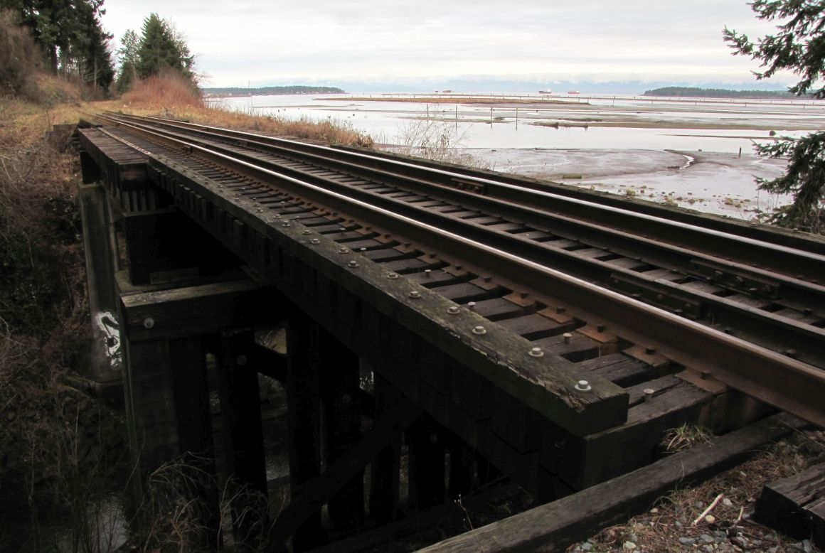 Rail trestle at Chase River Estuary Park